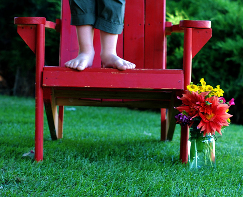Bench photo by Farmer Julie