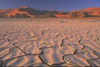Pic Dry Desert