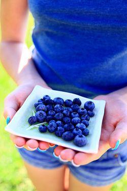 Blueberries photo by D Sharon Pruitt (flickr)