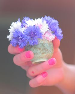 Tiny Flowers photo by D Sharon Pruitt (flickr)